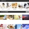 フリー写真素材サイトから無料で人物やおしゃれな写真の「商用利用」が可能!